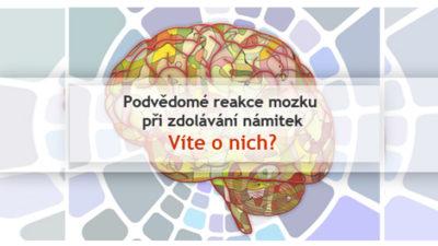 Jak reaguje podvedome mozek zakaznika kdyz vyvracite a zdolavate namitky? Ctete tenhle clanek a zjistete to